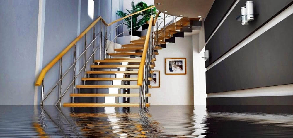 Water Damage Restoration In Oahu Honolulu